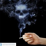 Many Ingredients In Cigarettes Are Harmful